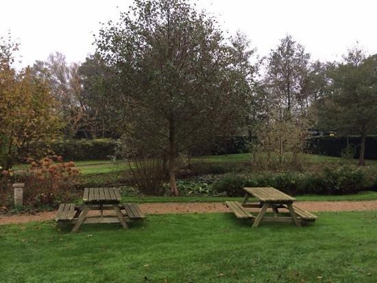 Hampshire Hotel - Renesse: de tuin met zitbanken