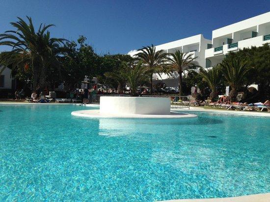 Smartline Hsa Ficus: poolside at the ficus