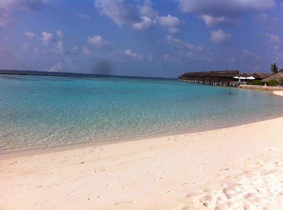 Velassaru Maldives: The beach next to our Villa