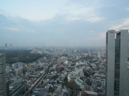 Hotel Century Southern Tower: View from 26th Floor