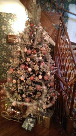 Swiss Hotel: Christmas trees abound