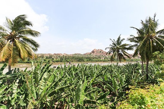 Archana Guesthouse: great river view