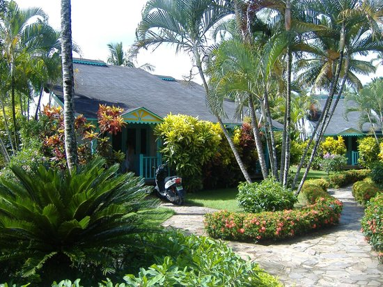 Las Palmas Residence : bungalow 1