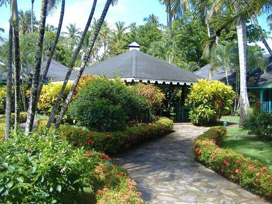Las Palmas Residence : jardines