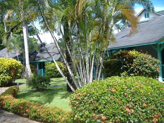 Las Palmas Residence : bungalow 2