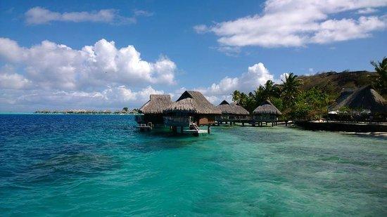 Maitai Polynesia Bora Bora: Vue depuis le bungalow (104)