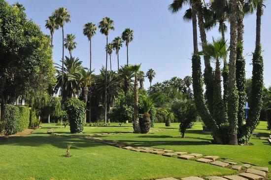 Hotel Ibis Fes : Il giardino