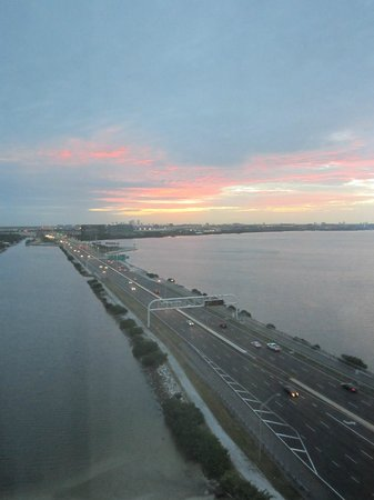 Westin Tampa Bay : View from 1407!