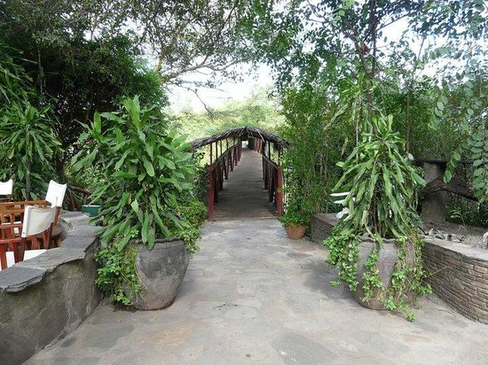 Fig Tree Camp: walkway to safari jeeps from hotel (over talek river)