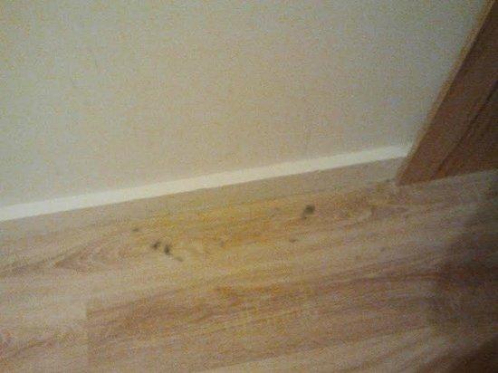 Centrooms House : Dettaglio camera/polvere pavimento2