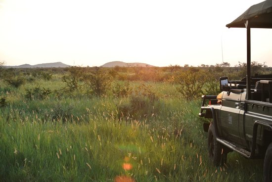 Tau Game Lodge: View with Lodge Jeep