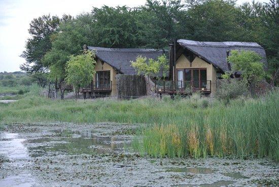 "Tau Game Lodge: ""Rooms"", more like bungalos"