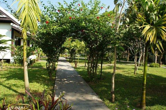 Luang Prabang Paradise Resort: Omgeving