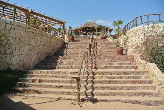 Tamra Residence Apartment Resort Managed by Egyptian Vacation Club: treppe zum strand