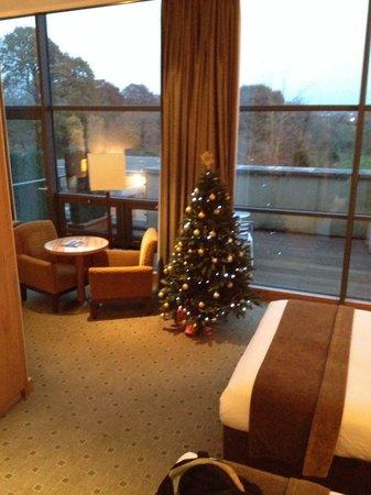 Newpark Hotel: Room 424