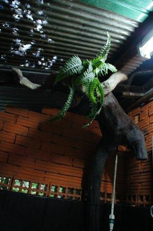 Khao Sok Tree House Resort: De douche met douchekop! :)