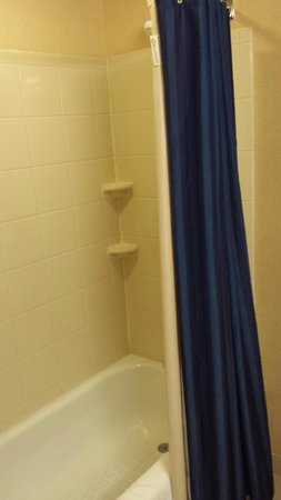 Courtyard by Marriott Memphis Southaven : shower