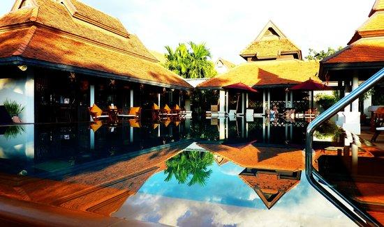 Bodhi Serene Hotel : Swimming Pool