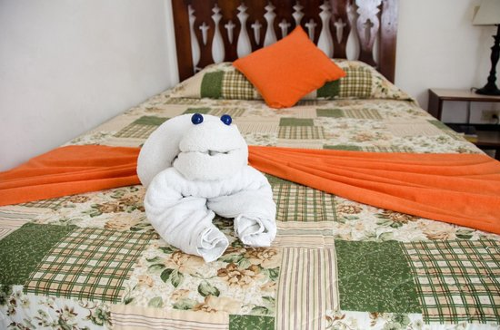 Hotel Casona de la Isla : cute towel animals keep you smiling