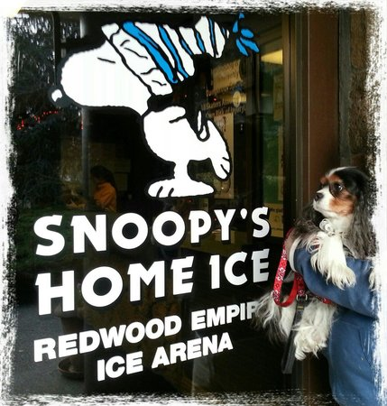 Redwood Empire Ice Arena : Lady C's hero :-)