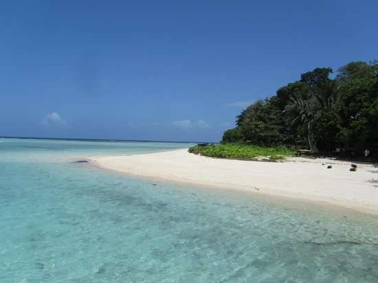 Pulau Mabul, Maleisië: Sipadan Beach!