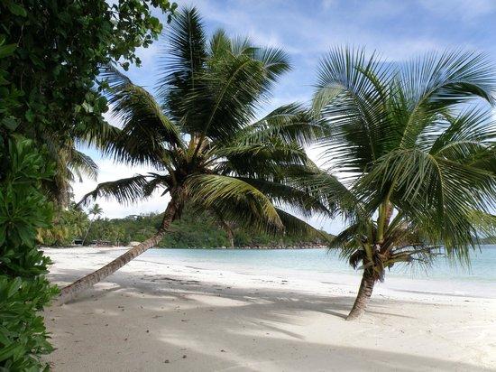 Le Duc de Praslin : strand bij het hotel