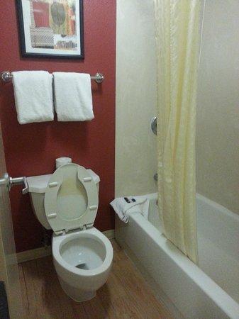 Red Roof Inn San Antonio West Sea World: Bathroom