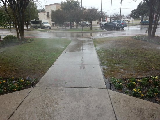 Red Roof Inn San Antonio West Sea World: Sprinklers on for 2 days straight - careful some sidewalks were slippery
