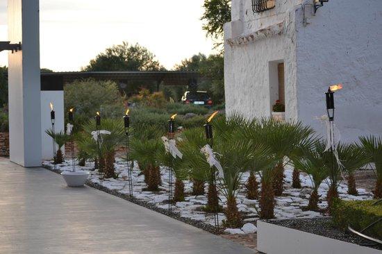 Bodegas Real: Jardines