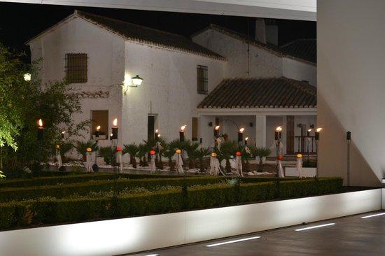 Bodegas Real: Jardin y Casa antigua al fondo