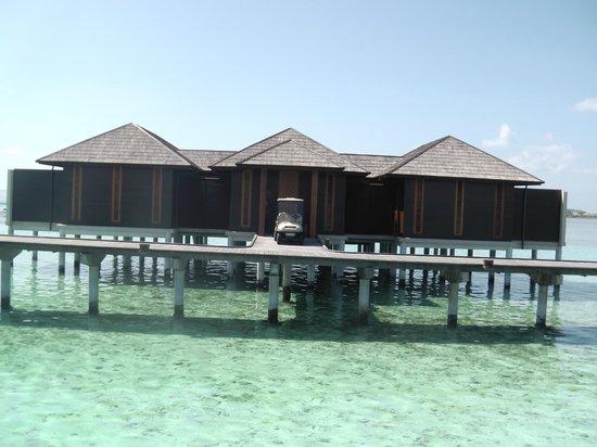 Paradise Island Resort & Spa: Ocean Suite