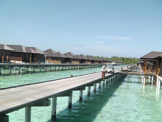 Paradise Island Resort & Spa: Villa Section