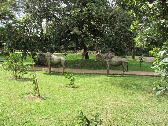 Wildebeest Eco Camp: The camp