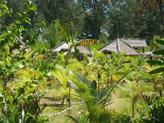 Adeng-Adeng Bungalows : gardens