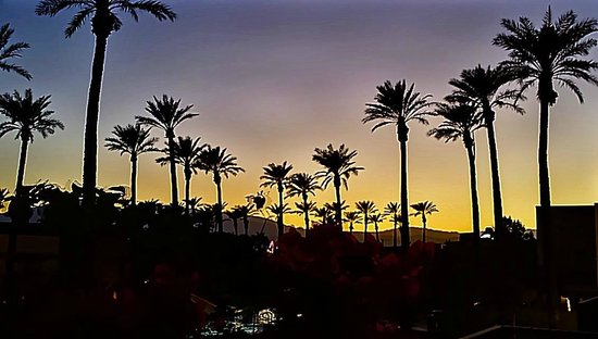 Fantasy Springs Resort Casino : Pool at sunset