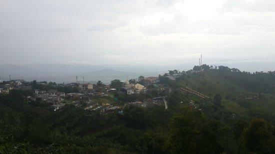 Cafe San Alberto: Vista de Buenavista