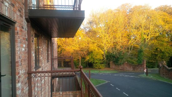 Woodbury Park Hotel & Golf Club: balcony