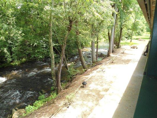 The Cub Motel : Beautiful creekviews