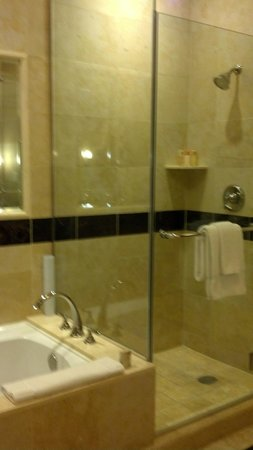 The Palazzo Resort Hotel Casino: Shower/Bath