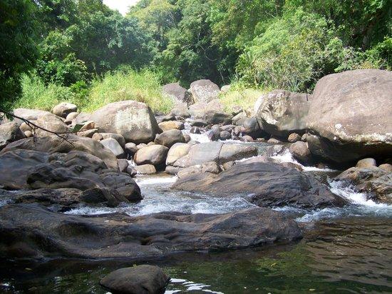 River Garden Resort & Camp Site : Aanvoer van het zwemwater