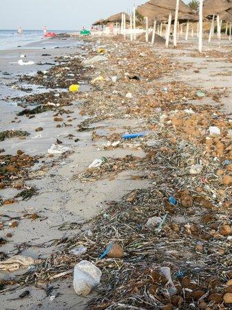 SENTIDO Rosa Beach : Beach litter