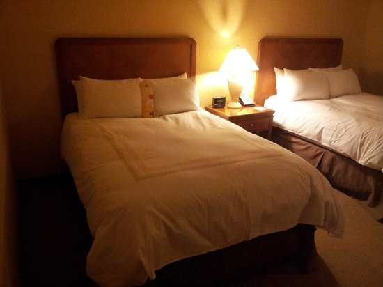 Little Rock Marriott: Bed