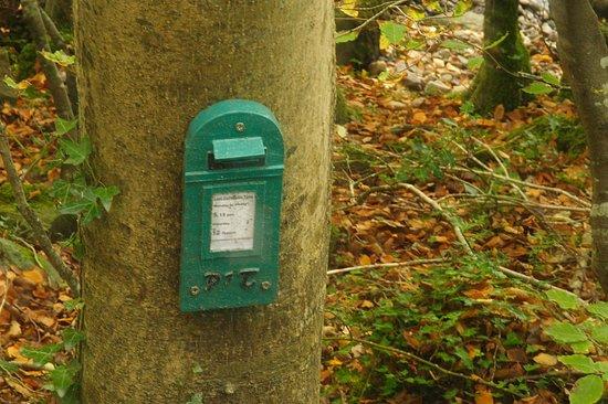 Swan Park: fairy's post box