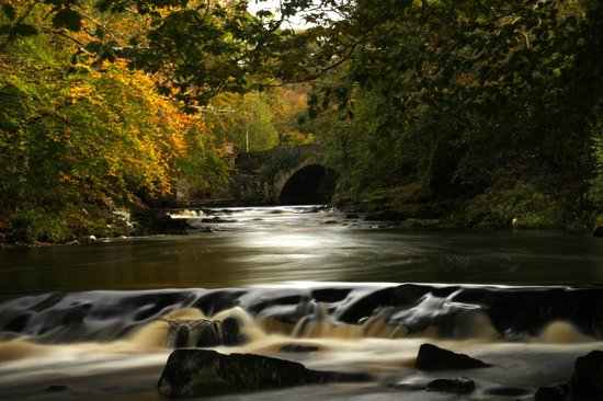 Buncrana, Ierland: Crana River Autumn Flow