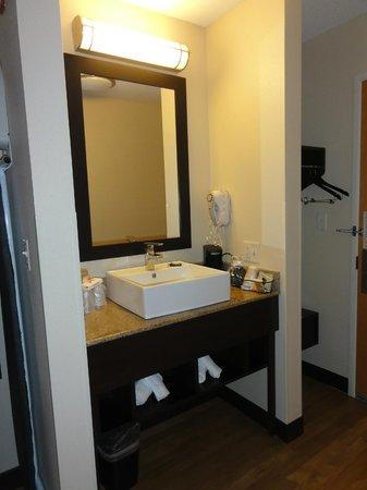 Red Roof PLUS+ Boston - Logan: lavabo dans la chambre