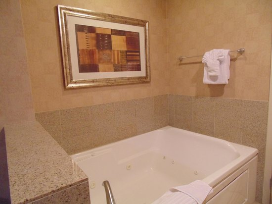 Platinum Hotel and Spa : Framed art work above Spa Tub