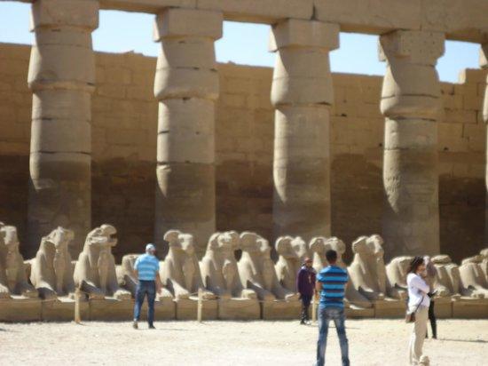Avenue of Sphinxes: Conectando los  templos de Luxor y Karnak