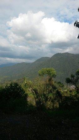 Urcu de Mindo Hotel: Vista del lodge