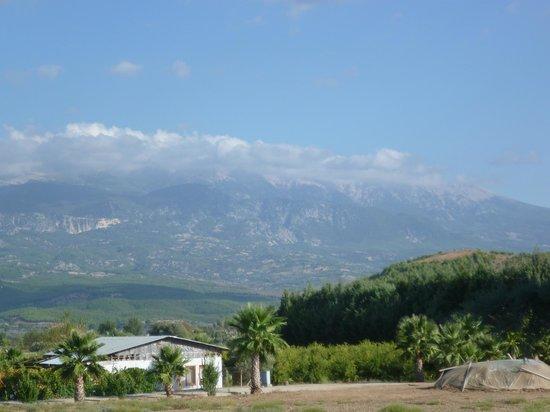 Bahar : View from balcony