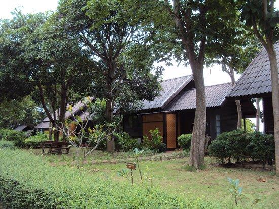 Phi Phi Natural Resort : room